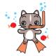 Bubbles the Cat Snorkeling
